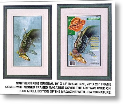 Pike Fishing Original And Magazine Metal Print by JQ Licensing