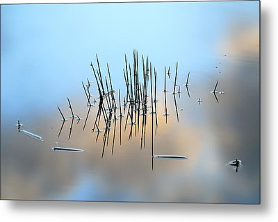 Pinchos Metal Print by Guido Montanes Castillo
