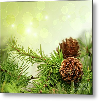 Pine Cones On Branches With Holiday Background Metal Print by Sandra Cunningham