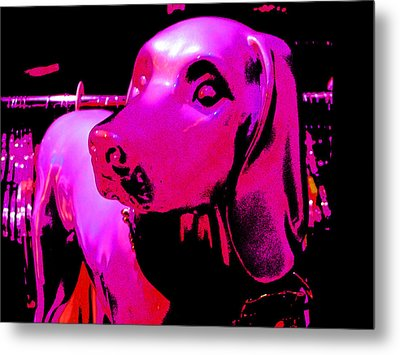 Pink And Purple Pooch Metal Print by Kym Backland