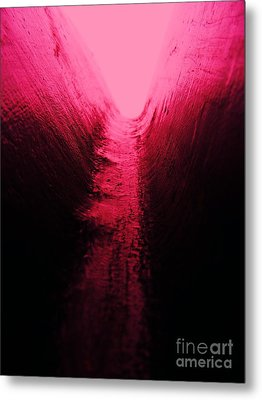 pink Valley Metal Print by Trevor Fellows
