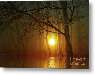Place To Dream Metal Print by Bruno Santoro