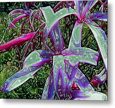 Plasticized Cape Lily Digital Art Metal Print by Merton Allen
