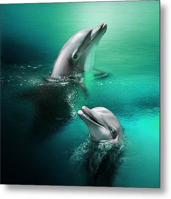 Playful Dolphins Metal Print by Julie L Hoddinott