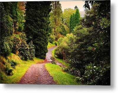 Pleasant Path. Benmore Botanical Garden. Scotland Metal Print by Jenny Rainbow