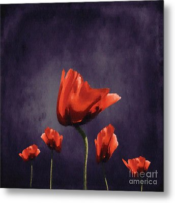Poppies Fun 02b Metal Print by Variance Collections