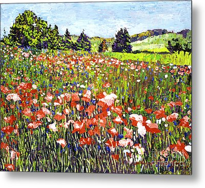 Poppy Fields In France Metal Print by David Lloyd Glover