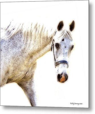 Portrait Of A Horse Series II Metal Print by Kathy Jennings
