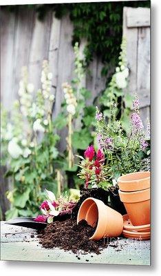 Preparing Flower Pots Metal Print by Stephanie Frey