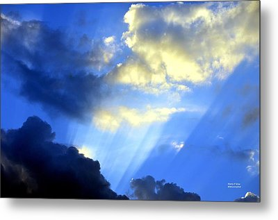 Prismed Metal Print by Maria Urso
