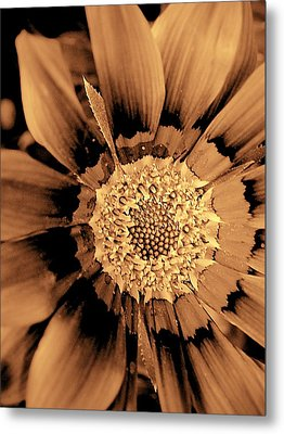 Pull To The Center Metal Print by Beth Akerman