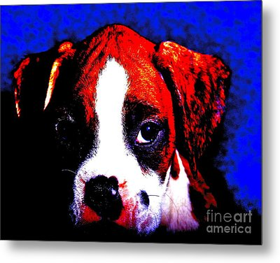Pup1 Metal Print by Xn Tyler