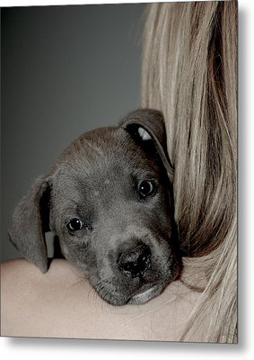 Puppy Love Metal Print by Janet Smith