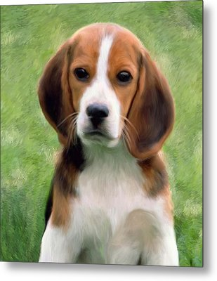Puppy Portrait Metal Print by Snake Jagger