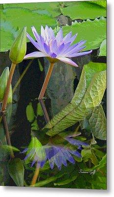Purple Lotus Metal Print by Suzanne Gaff
