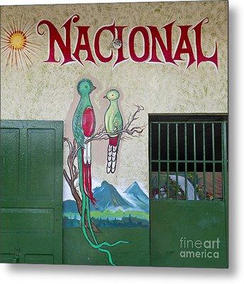 Quetzal Painting  Metal Print by Heiko Koehrer-Wagner