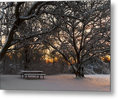 Quiet Moment Before Dawn Metal Print by Yelena Rozov