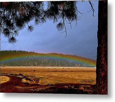 Rainbow Ridge Metal Print by Cindy Wright
