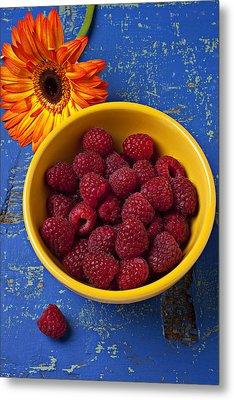 Raspberries In Yellow Bowl Metal Print by Garry Gay