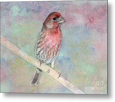 Ready To Sing My Song Metal Print by Betty LaRue