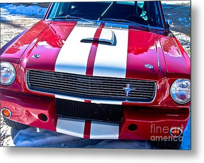 Red 1966 Mustang Shelby Metal Print by James BO  Insogna