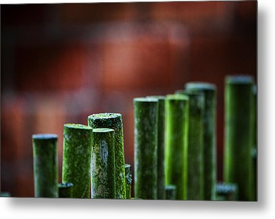 Red And Green Too Metal Print by Karen Ulvestad