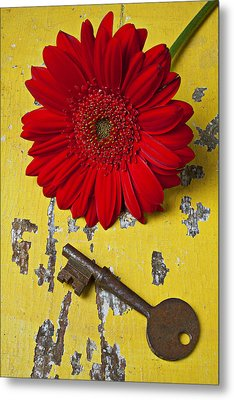 Red Daisy And Old Key Metal Print by Garry Gay