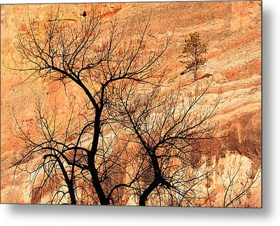Red Rocks And Trees Metal Print by Adam Pender