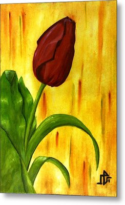 Red Rose Metal Print by Baraa Absi