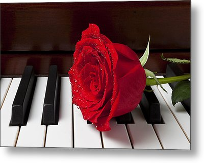 Red Rose On Piano Metal Print by Garry Gay