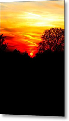 Red Sunset Vertical Metal Print by Jasna Buncic