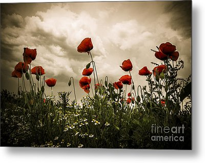 Red Weed Metal Print by Martin Dzurjanik
