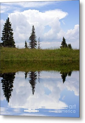 Reflection Of Lake Metal Print by Odon Czintos