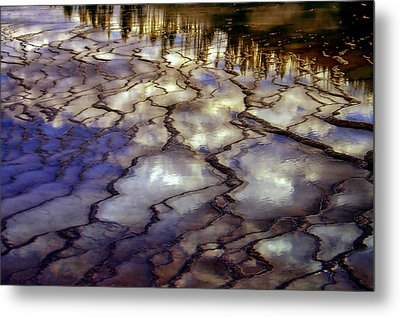Reflections Metal Print by Ellen Heaverlo