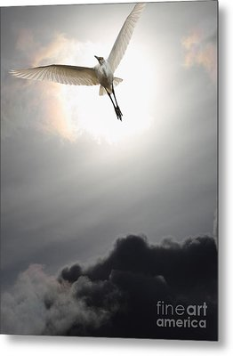 Return To Eternity . Vertical Cut Metal Print by Wingsdomain Art and Photography