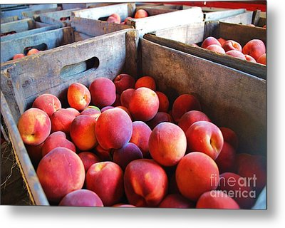 Rfm 43 Metal Print by TSC Photography Timothy Cuffe Jr