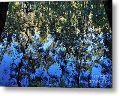 Ripples And Reflections Metal Print by Kaye Menner