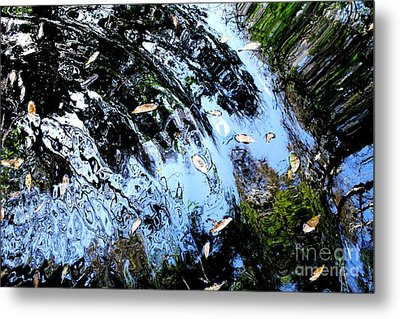 Ripples And Reflections Metal Print by Theresa Willingham