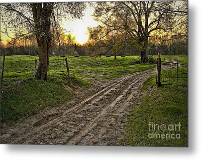 Road Less Traveled Metal Print by Cris Hayes