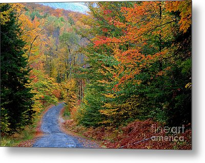 Road Through Autumn Woods Metal Print by Larry Landolfi and Photo Researchers