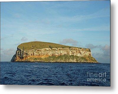 Rocky Cliffs Of Darwin Island Metal Print by Sami Sarkis