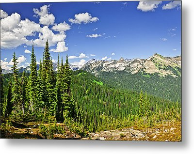 Rocky Mountain View From Mount Revelstoke Metal Print by Elena Elisseeva