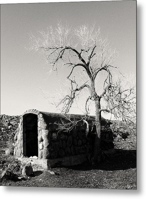 Root Cellar Metal Print by Tony Grider