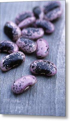 Runner Beans (phaseolus 'scarlet Runner') Metal Print by Maxine Adcock