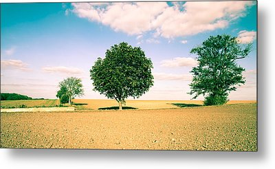 Rural Scene Metal Print by Tom Gowanlock