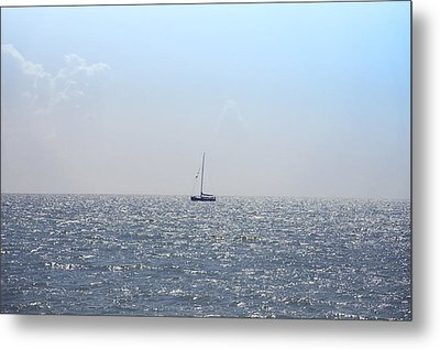 Sailing On Metal Print by Bill Cannon