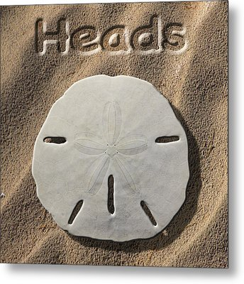 Sand Dollar Heads Metal Print by Mike McGlothlen