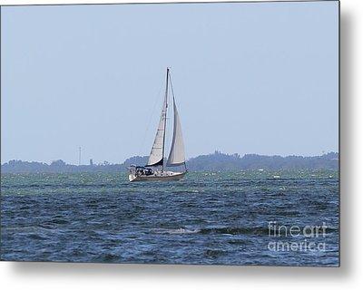 Sarasota Sailing Metal Print by Theresa Willingham