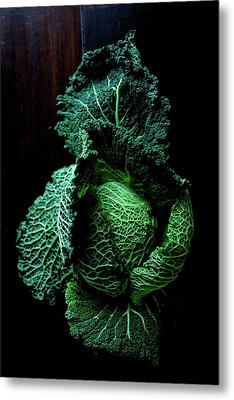 Savoy Cabbage Metal Print by Ingwervanille