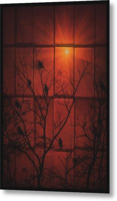 Scarlet Silhouette Metal Print by Tom York Images